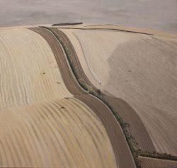 liam hanley landscape