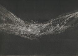 Abandoned Nest(iv) 22cms x 35cms Monotype